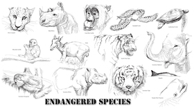 endangeredSpecies